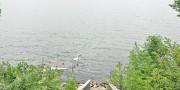 707 Lake HendricksDrive, Hendricks, MN 56136