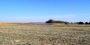 289.7+/- Acres in Brookings County, Brookings, SD 57006