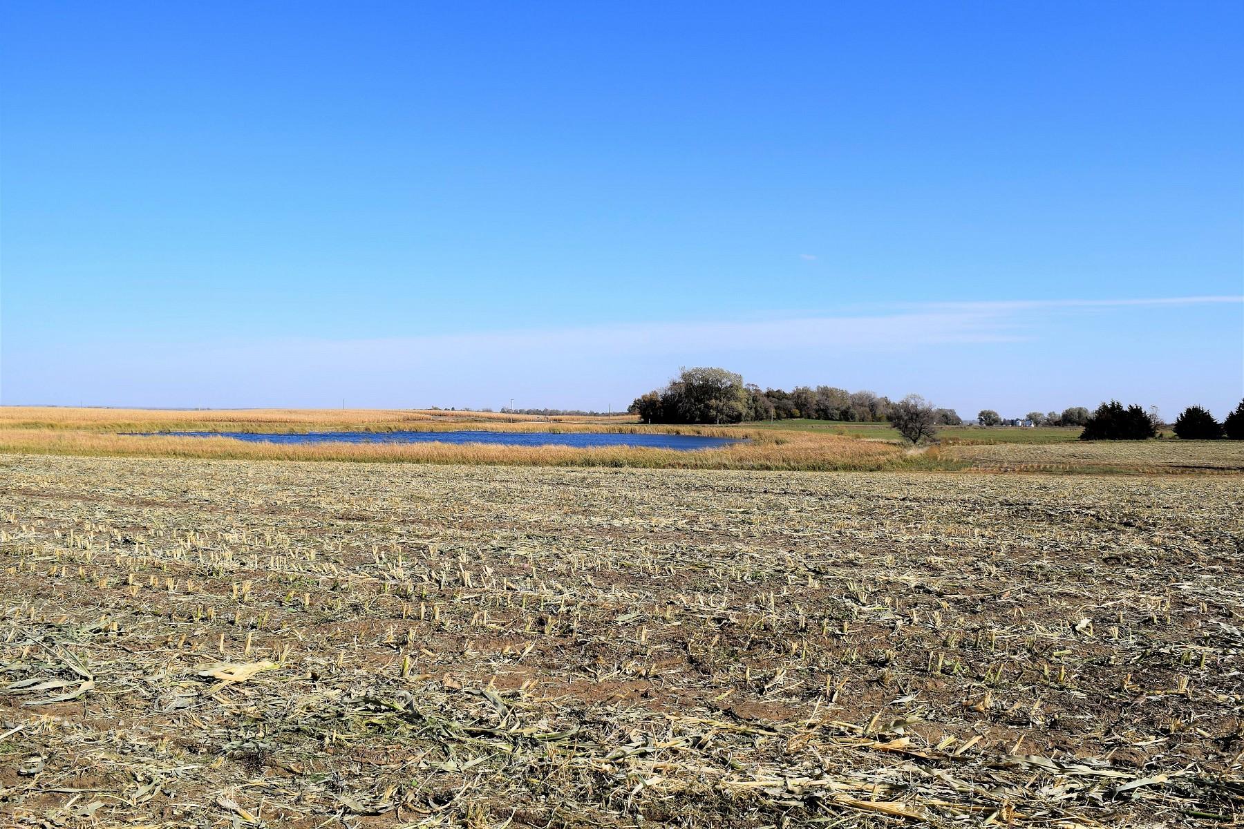 289.7+/- Acres in Brookings County, Brookings, SD 57006